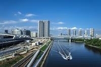豊洲新市場と東雲運河