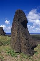 チリ イースター島 ラノ・ララクのモアイ像