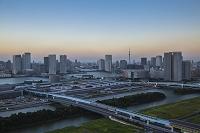 東京都 豊洲市場と豊洲、晴海周辺のビル群 夕景