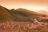 曽爾高原のススキの夕景