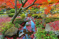 京都府 京都市 秋の城南宮 庭園
