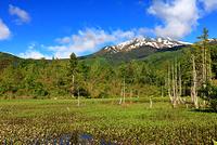 長野県 乗鞍高原 新緑のどじょう池と乗鞍岳
