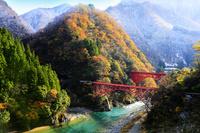 日本 富山県 黒部市 黒部峡谷