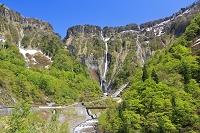 富山県 ハンノキ滝(称名滝は左の陰)