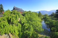 長野県 高度7mから望む上田城の北櫓と本丸堀と太郎山遠望