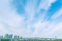 東京都 筋雲と臨海副都心