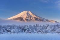 日本 山梨県 朝の富士山