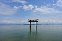 滋賀県 白髭神社 鳥居と琵琶湖