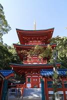 兵庫県 須磨寺三重塔
