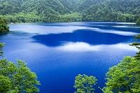 長野県 志賀高原 大沼池
