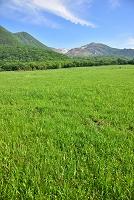 大分県 タデ原湿原 & くじゅう連山