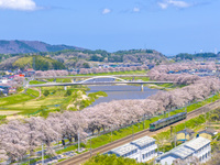 宮城県 東北本線と白石川堤の一目千本桜