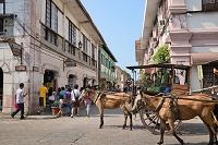 フィリピンビガン 馬車