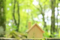新緑の森に置かれた木製の家
