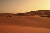 モロッコ メルズーガ砂丘
