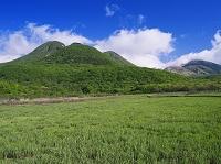 大分県 飯田高原 タデ原湿原よりくじゅう連山
