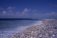 太平洋 キリバス クリスマス島 ベイ・オブ・レックス