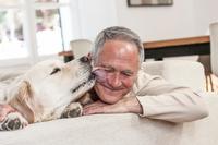 犬と暮らすシニア