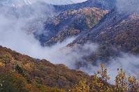 岐阜県 平湯温泉の紅葉と朝霧