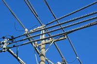三重県 鳥よけ防止の電線