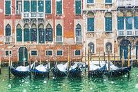 ベネチア カナル・グランデに係留されたゴンドラと春の雪