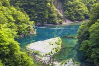 静岡県 寸又峡の夢の吊り橋