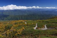 長野県 乗鞍岳位ヶ原の紅葉と乗鞍エコーライン