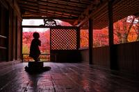 京都府 高山寺 石水院
