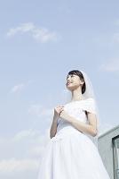 青空とウェディングドレス姿の若い女性