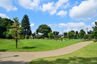東京都 練馬区立石神井松の風文化公園 花と木立の広場