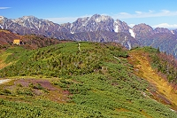 長野県 爺ケ岳から剣岳中央の山と立山左奥の山