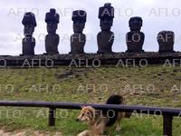 モアイ像が建つ島 チリ・イースター島