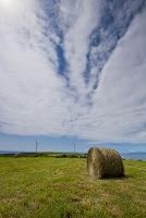 北海道 上ノ国町 風車と牧場ロール