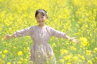 春に菜の花畑で手を広げる日本人の女の子