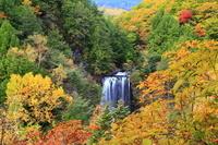 長野県 松本市 善五郎の滝