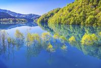 日本 秋田県 秋扇湖