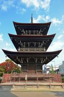 岐阜県 高山市 飛騨国分寺の三重塔