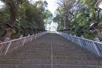 東京都 愛宕神社 出世の石段(男坂)