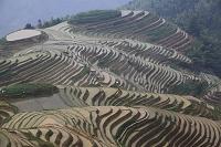 中国 広西チワン族自治区 龍勝