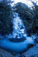 東京都 氷結した払沢の滝