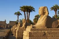 エジプト ルクソール神殿 スフィンクス