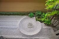 京都 大徳寺 龍源院