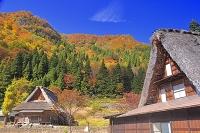 富山県 相倉合掌造り集落
