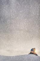 雪原を歩く男の子