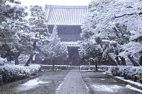 京都府 初雪の建仁寺