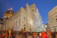 イタリア フィレンツェのクリスマスツリー