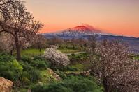 イタリア シチリア エトナ山