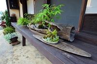 愛媛県 内子町八日市護国の町並み(伝統的建造物群保存地区)