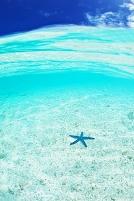 グアム 夏の海