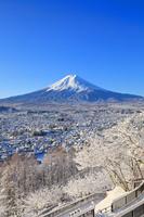 山梨県 朝の富士山と雪景色の富士吉田市街